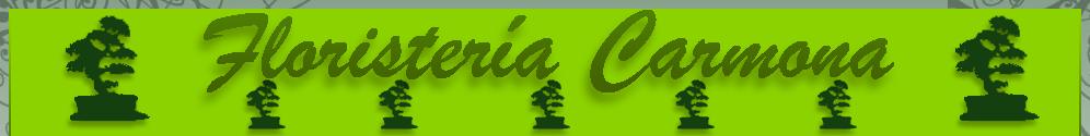FLORISTERIAS EN ALMERIA